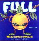 Full Citrus Label - Leaf Squeezing Orange