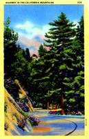 Highway in the California Mountains Postcard