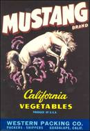 Mustang Crate Label