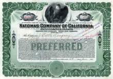 Natomas Company of California 1915 ( Gold dredging Operator )