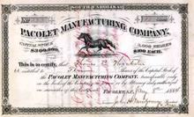 Pacolet Manufacturing Company 1880's