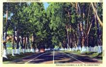 Peninsula Highway, U.S. 101