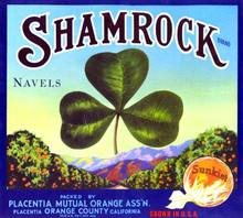 Shamrock Sunkist Citrus Label