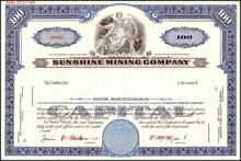 Sunshine Mining Company