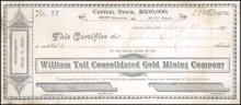 William Tell Consolidated Gold Mining Company 1891 - Sierra City, California