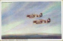 WW ll Grumann Martlets Fleet Fighters