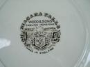 Wood & Sons Ironstone Niagara Falls Plate