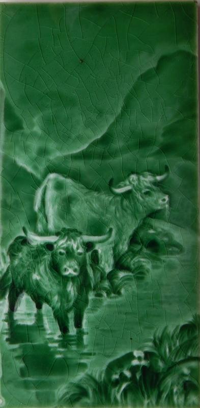 Sherwin & Cotton Tile