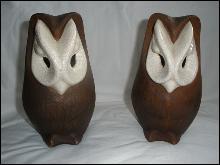 Brayton Laguna Owls