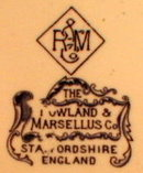 Buffalo Souvenir Plate R & M Staffordshire