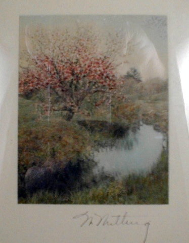 WALLACE NUTTING Scene Hand Colored Cherry Tree