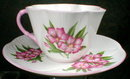 SHELLEY Oleander DAINTY - Cup and Saucer -