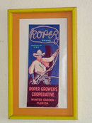 """Ropers Growers Cooperative"" Framed Advertisement from Winter Garden, Florida"