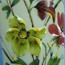 Bristol  ART GLASS Vase  hand painted - attributed to Webb Butterfly & Florals Art Glass