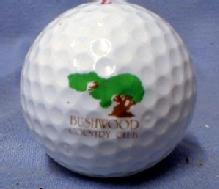 old BUSHWOOD COUNTRY CLUB - Spalding Top Flite XL Golf Balls - Mint in Box sporting