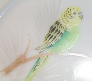 Attractive WESTMORELAND Opaque Glass Hand Painted Green/Yellow Parakeet Decorative Plate