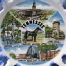 old Tennessee Walking HORSE * Leeffoot Lake * Vintage Souvenir  Porcelain