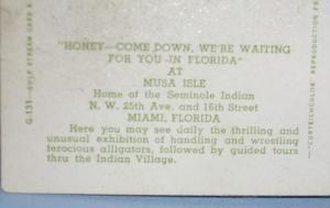 Black Americana POSTCARD - Honey, Come Down - Ethnographic