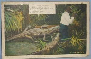 Black Americana POSTCARD - A Darky's Prayer - Ethnographic