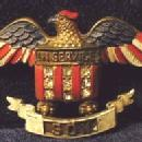 US Army  WWI Military IN SERVICE SON -WWI Enameled Casein Catalin or Bakelite - American Flag Figural Eagle Estate Jewelry