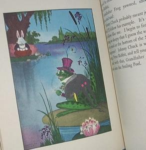 PETER COTTONTAIL Bedtime Story Book - Paper