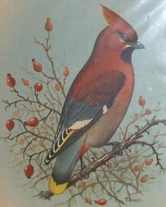 Union-Castle Line R.M.S. PRETORIA CASTLE Waxwing Decorated 1960 First Class Dinner Menu - Paper