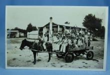 old vintage Horse Drawn Wagon of Black Children LEWIS PLANTATION Brooksville Florida - RPPC - Paper postcard