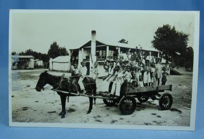 old vintage Horse Drawn Wagon of Black Children LEWIS PLANTATION Brooksville Florida - RPPC - Paper postcard