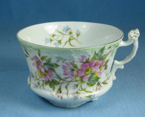 CT Prussia Germany HAND PAINTED Porcelain Teacup