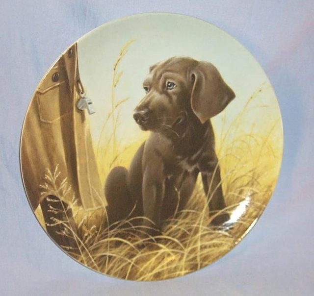 Knowles FINE FEATHERED FRIENDS - ENGLISH SETTER Porcelain Plate