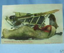 Prospector Camping in ALASKA RPPC Nowell Color Postcard