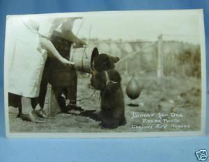 Arial Scene WHITEHORSE Yukon Territory RPPC Postcard