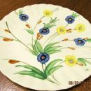 Blue Ridge Chicory Plate - Fine Porcelain Pottery