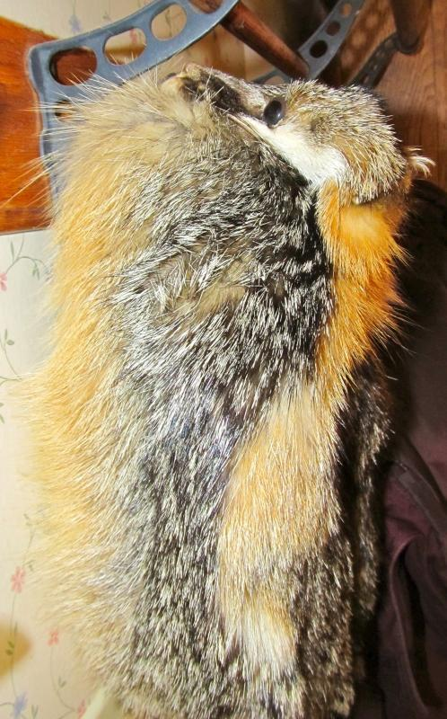 Gray Fox Fur Hat Man's Large - Sporting