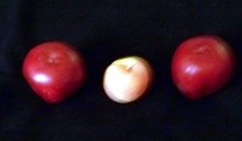 THREE WAXED FRUIT CANDLES