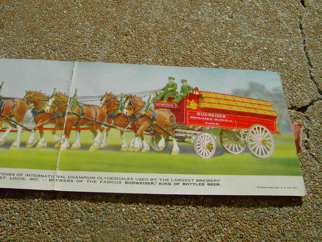 BUDWEISER CLYDESDALE CARD