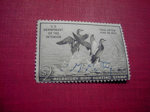DUCK STAMP MIGRATORY BIRD HUNTING 1951 1952 GADWALL