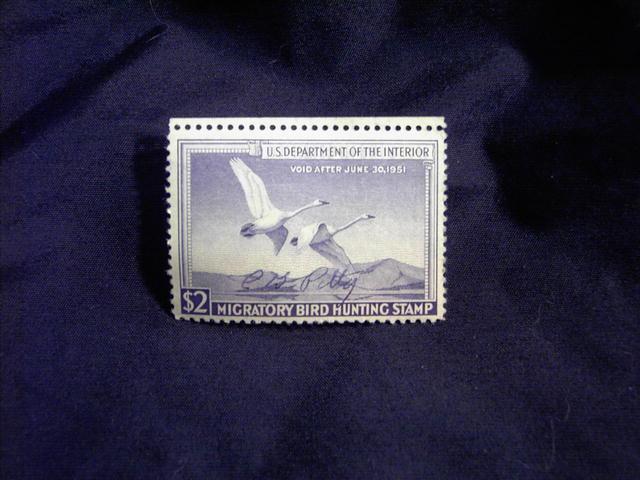 MIGRATORY BIRD DUCK HUNTING STAMP 1950 1951 TRUMPETER SWAN