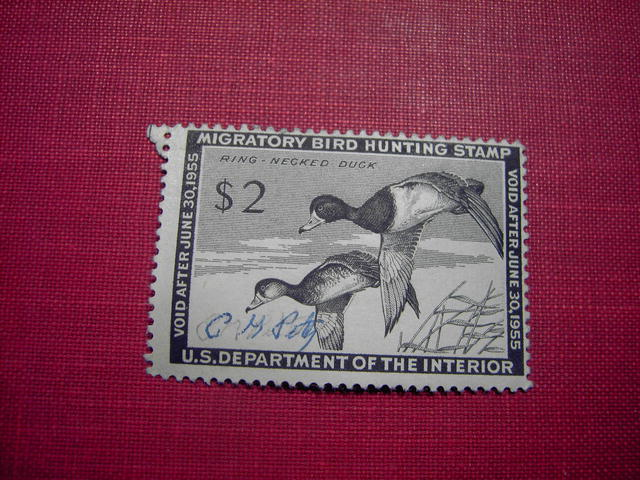 MIGRATORY BIRD DUCK HUNTING STAMP 1954 1955 RING NECKED DUCK