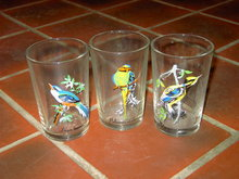 EXOTIC BIRD GLASS TUMBLER SET