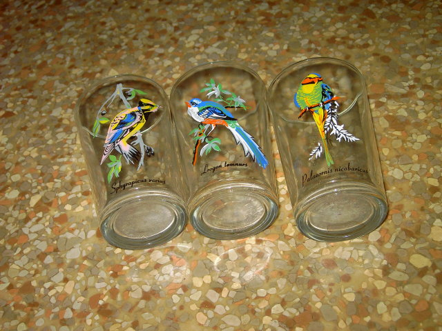 EXOTIC BIRD GLASS TUMBLER SET