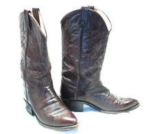 Dark Chocolate Brown Dan Post  Cowboy Boots