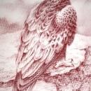 Monotone  Painting or Drawing  of Hawk signed Shively   ( George Shively)