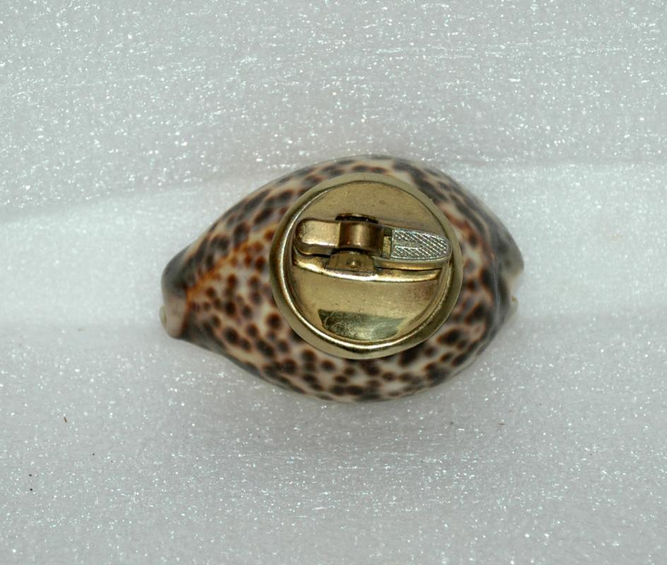 Spotted Cowrie Shell Table Lighter Vintage