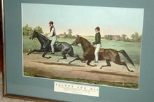 Framed Horse Racing Print Tacony & Mac   ** PRICE REDUCTION!**