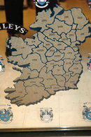 Bailey's Irish Cream Bar Mirror Map of Ireland