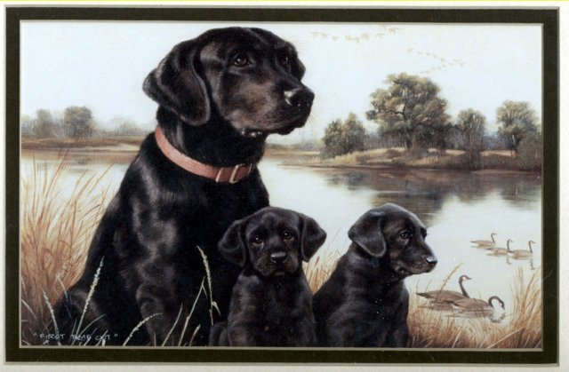 Labrador Mom & Pups Print