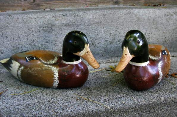 DUCK DECOYS WITH GLASS EYES  x 2  CARVED WOOD  AND HAND PAINTED