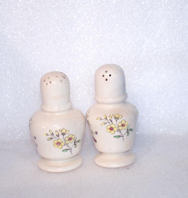 Copeland Spode Gainsborough  Salt Pepper Shakers / Rare