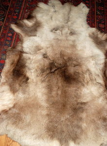 Genuine  Caribou Fur  Hide Rug  of  Thick Long Fur western decor